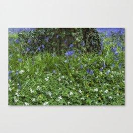 Wild Flower Wood Canvas Print