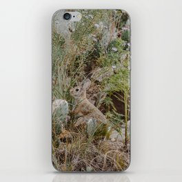 Spooked Desert Bunny iPhone Skin