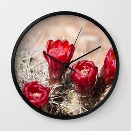Cactus Flowers at Canyonlands, Utah Wall Clock