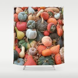 cornucopia (heirloom pumpkins and squashes) Shower Curtain