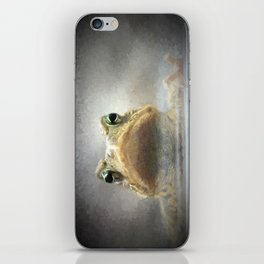 Frog from Front Painting Style iPhone Skin