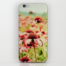 Forgotten Summer iPhone & iPod Skin