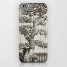 Bonsai iPhone 6s Slim Case