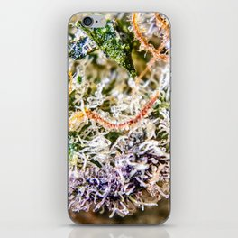 Diamond OG Indoor Hydroponic Close Up View Buds Trichomes iPhone Skin