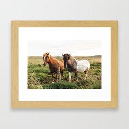 Icelandic Horses Framed Art Print