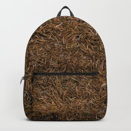 Needle Carpet Two Backpack