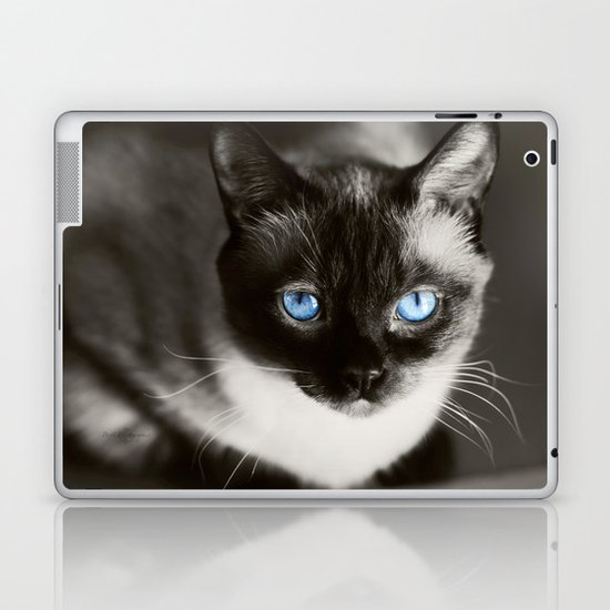 Stoney Blue Laptop & iPad Skin