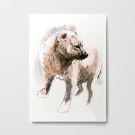 Speothos the Bush Dog Metal Print