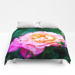 Rose Flower And Buds, Green Background Comforters