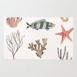 Sealife Schoolchart Rug