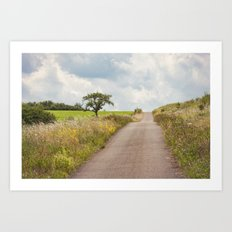 Summers Day Art Print