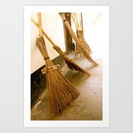 African Brooms Art Print