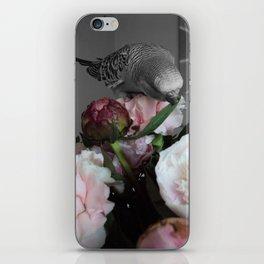 birdie iPhone Skin