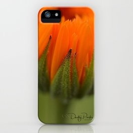 Just Let It Go iPhone Case