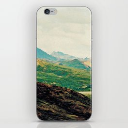 Denali Mountains iPhone Skin