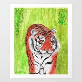 Magnificent Tiger Art Print