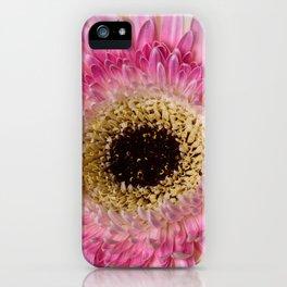 Gebera Daisy iPhone Case