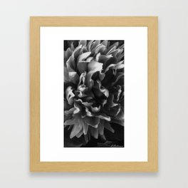 Close up at perfection Framed Art Print