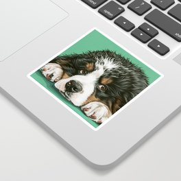 Cute Bernese Mountain Dog Puppy Pet Portrait Sticker