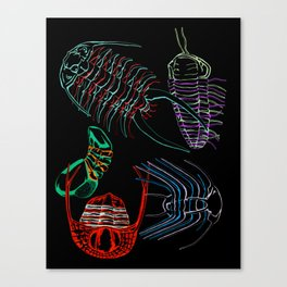 Ordovician Era Trilobites 2 Canvas Print