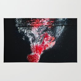 Raspberry Splash Rug