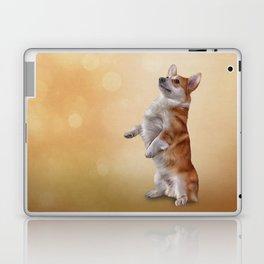 Dog breed Welsh Corgi Laptop & iPad Skin