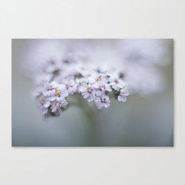 Moody Blooms Canvas Print