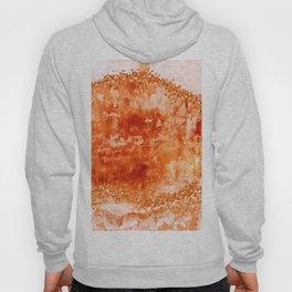 ROSE GOLD GEMS, burnt orange palette Hoody