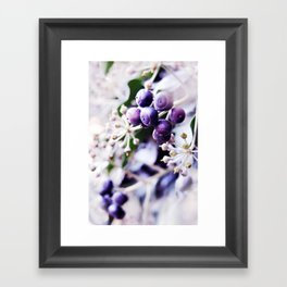 Vanilla Blue Framed Art Print