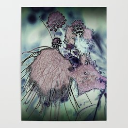 Mysterious Blossom - Liquid Winter Poster