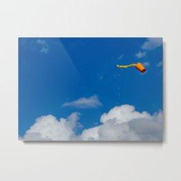 Flyin Metal Print