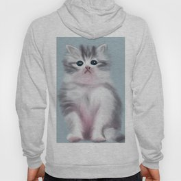 Cute Grey Kitten Hoody