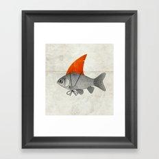 Goldfish with a Shark Fin Framed Art Print