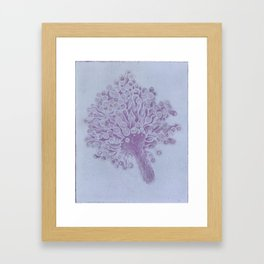 seacell Framed Art Print