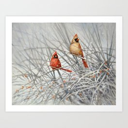 Cardinal Couple in Winter Art Print