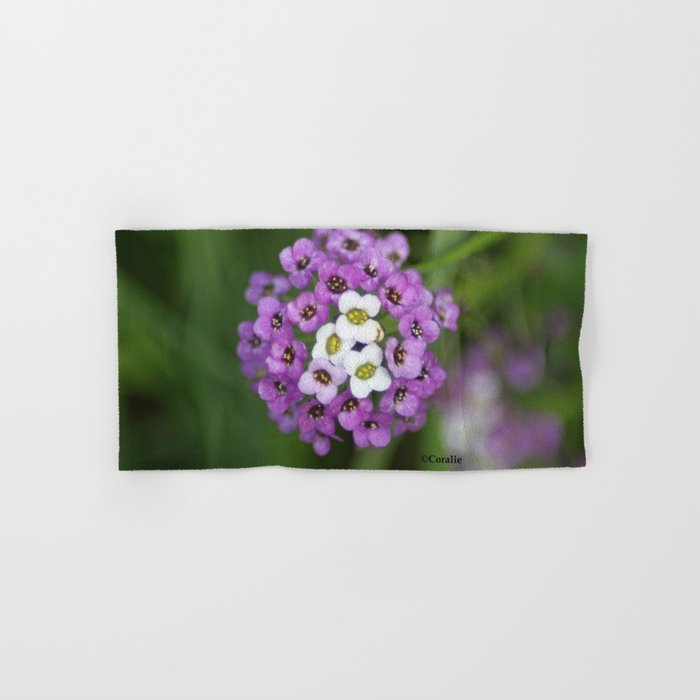 alyssum flower bloom Hand & Bath Towel