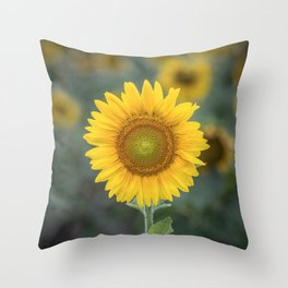 Tournesol jaune Throw Pillow