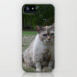 Clawdia cat iPhone Case