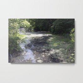 Longwood Gardens - Spring Series 219 Metal Print