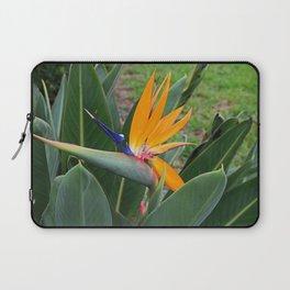 Fort Myers Paradise Laptop Sleeve