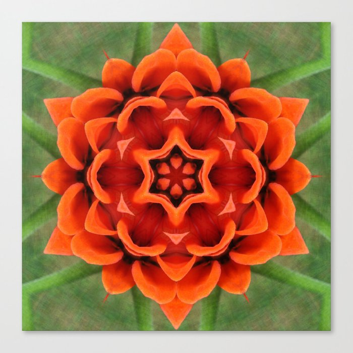 Booming Bloom Print Canvas Print