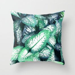 Dumb Cane Foliage Throw Pillow
