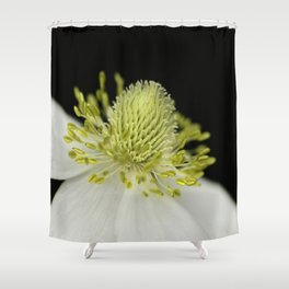 SnowDrop Macro Shower Curtain