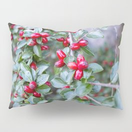 Rose Hips Pillow Sham