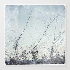 sea plants (light blue) Canvas Print