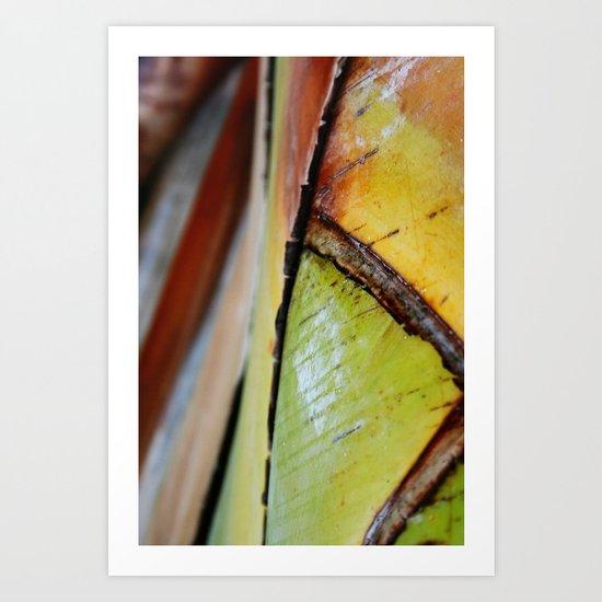 Abstract Palm 2 Art Print
