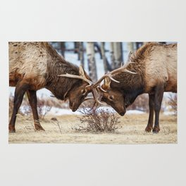 ELK IN RUT PHOTO - COLORADO WILDLIFE IMAGE - ROCKY MOUNTAIN NATIONAL PARK - NATURE PHOTOGRAPHY Rug