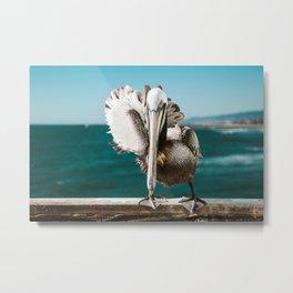 Pelican Says Hi Metal Print