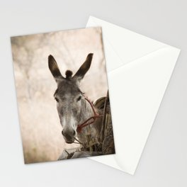 The curios donkey Stationery Cards