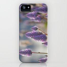Mulla Mulla Magic iPhone Case